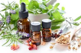 ANN ARBOR SCHOOL OF MASSAGE, HERBAL & NATURAL MEDICINE