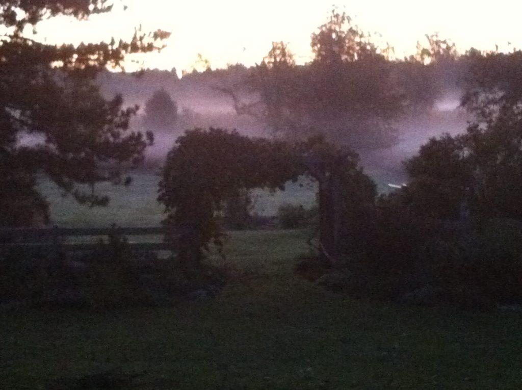 The Farm on Jennings